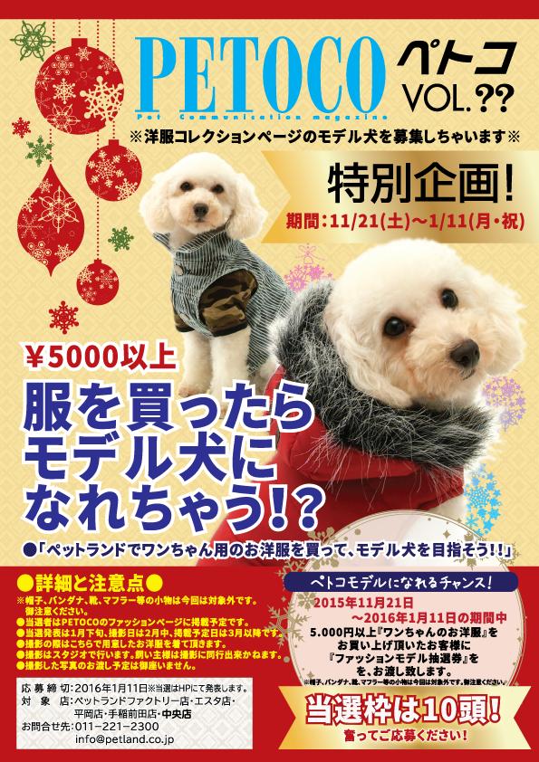 モデル犬キャンペ完2ol