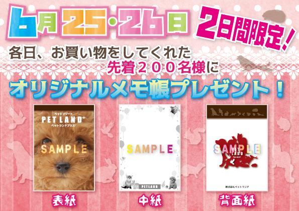 メモ帳宣伝-2サンプル
